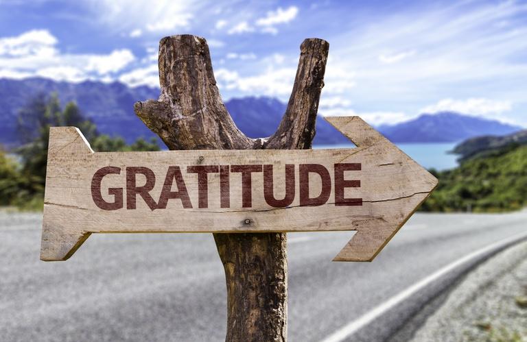 Gratitude Meditation Script