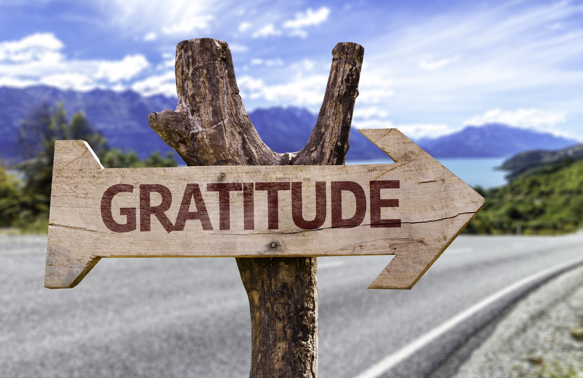 Wooden sign that reads gratitude